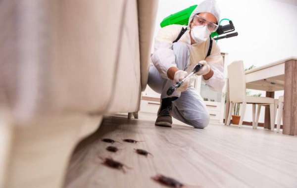 Effective Pest Control Measures
