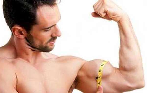 Precisely how to Build Muscle On behalf of Slim Dude