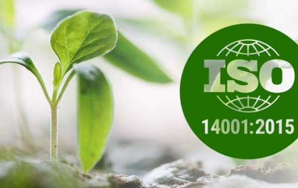 Would schools and colleges benefit from ISO 14001?