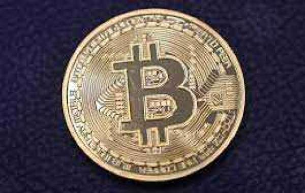 Bitcoinevolution Instantly before this, four individuals were.