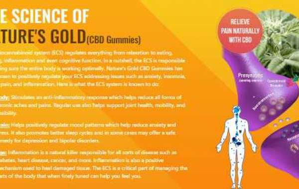 Natures Gold CBD Gummies Reviews, Price, Benefits, Side Effects Buy!